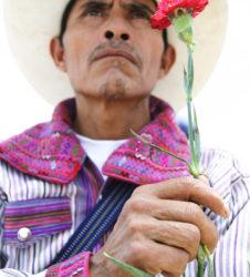 Hombre maya con clavel