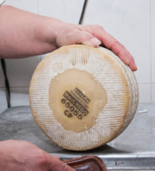 La Mancha queso