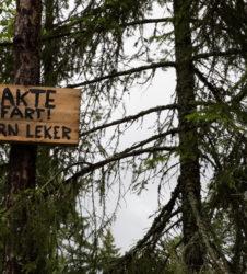 Bosque cartel conducir despacio