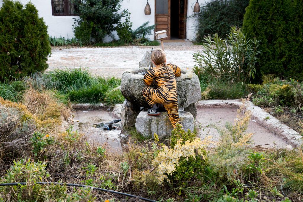 Tigre Fuente Pueblo