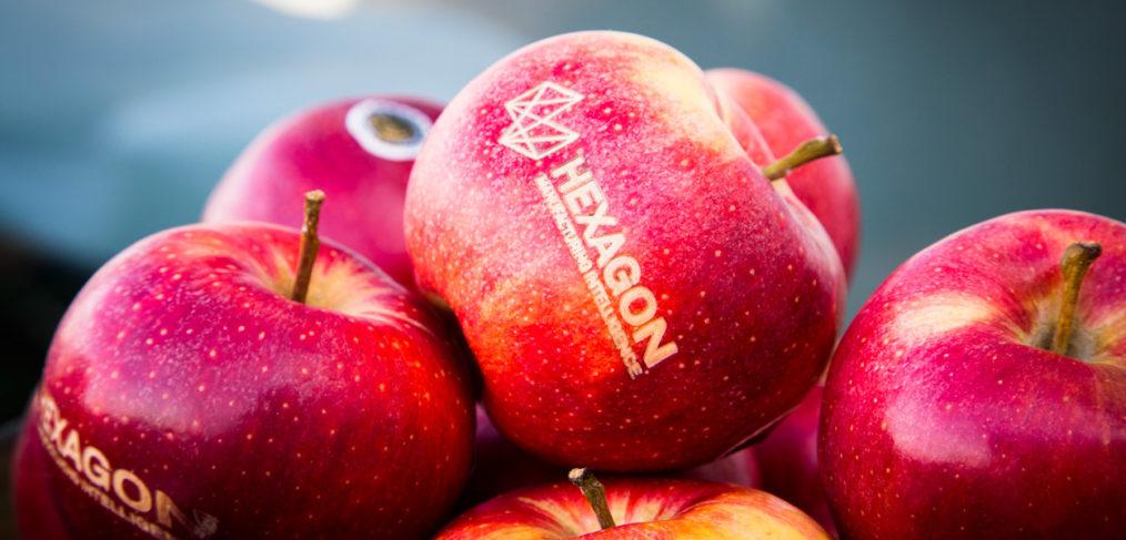 fotos eventos logo manzanas