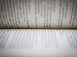 libros atrapan