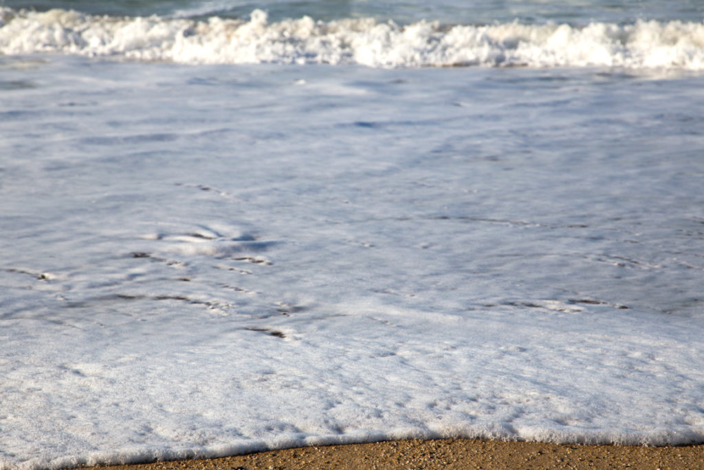 elenapl-olas-orilla-mar-2016
